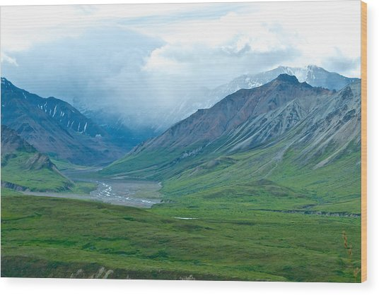 Glaciers From Eielson Visitor's Center In Denali Np-ak  Wood Print