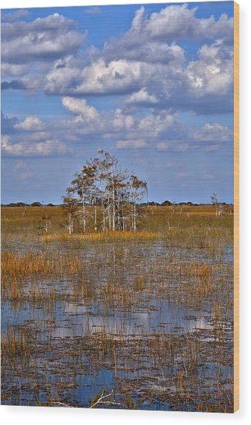Glades Wood Print
