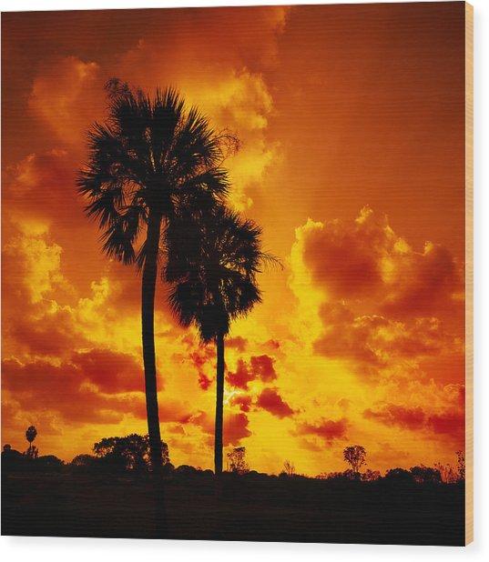 Glades Sunset Wood Print