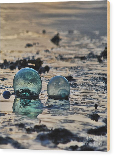 Glass Float At Sunset Wood Print