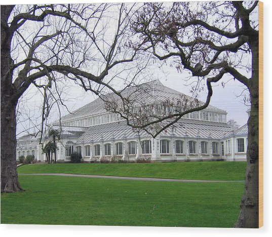 Glass House At Kew Gardens Wood Print