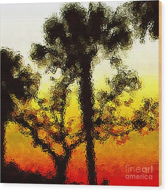Glass Sunset Wood Print by Gayle Price Thomas