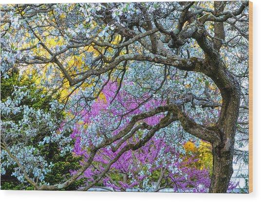 Glen Magna Bloom Wood Print