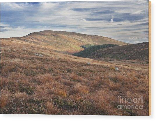 Glenmacnass 4 Wood Print by Michael David Murphy