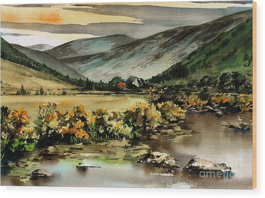 Glenmalure  Valley Wood Print