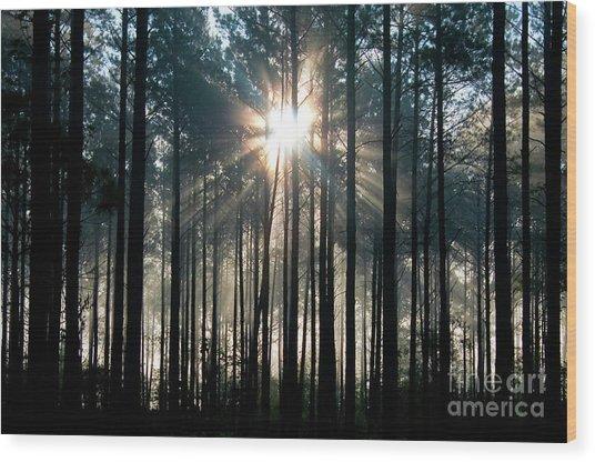 Glory Wood Print