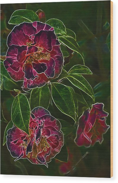 Glowing Camellia Wood Print