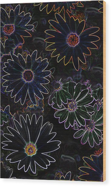 Glowing Daisies Wood Print