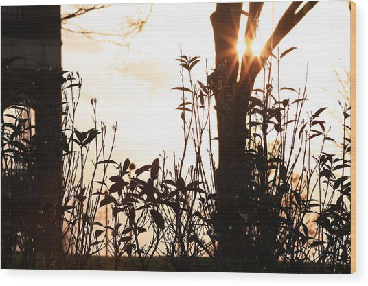 Glowing Landscape Wood Print