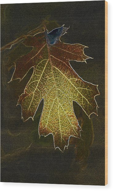 Glowing Leaf Wood Print