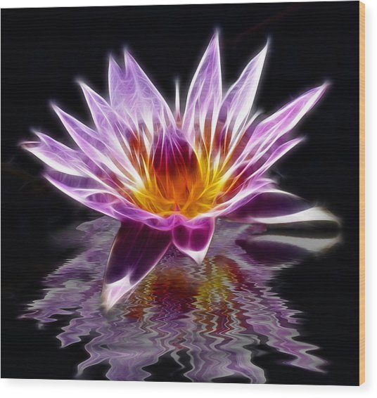 Glowing Lilly Flower Wood Print