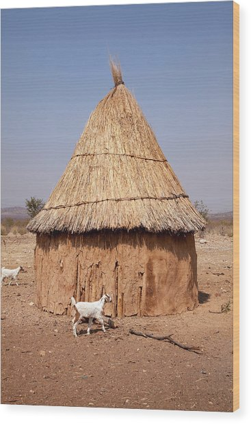 Goats And Hut In Himba Village, Opuwo Wood Print by Jaynes Gallery