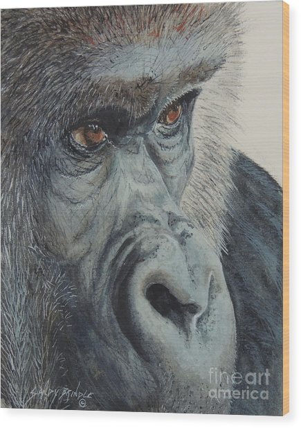 Going Ape...sold  Wood Print