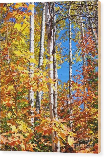 Gold Autumn Wood Print