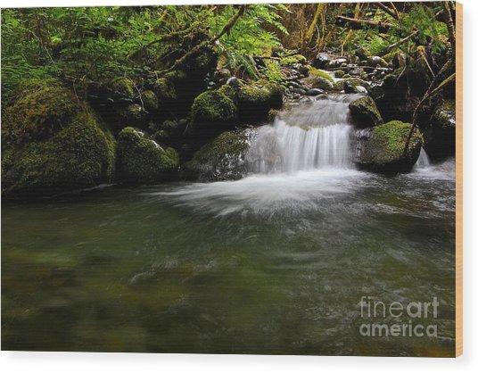 Gold Creek  Wood Print by Tim Rice