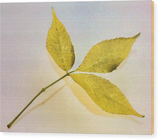 Gold Leaf Wood Print