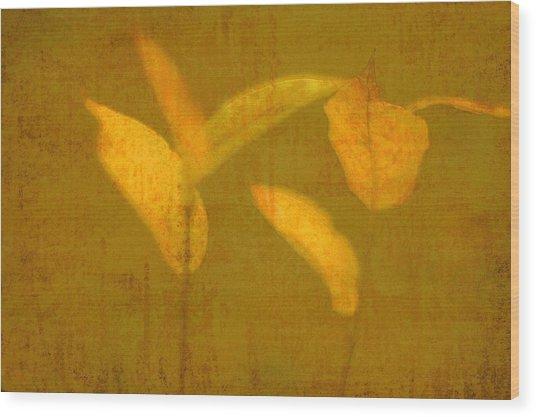 Gold Leaves Wood Print