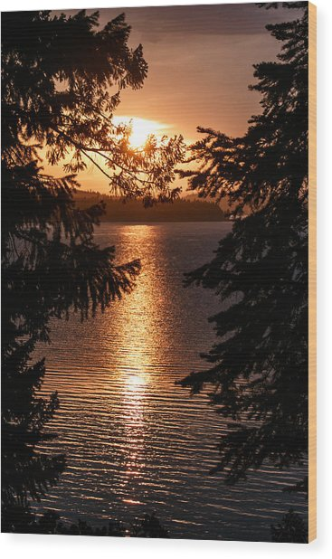 Golden Almanor Wood Print