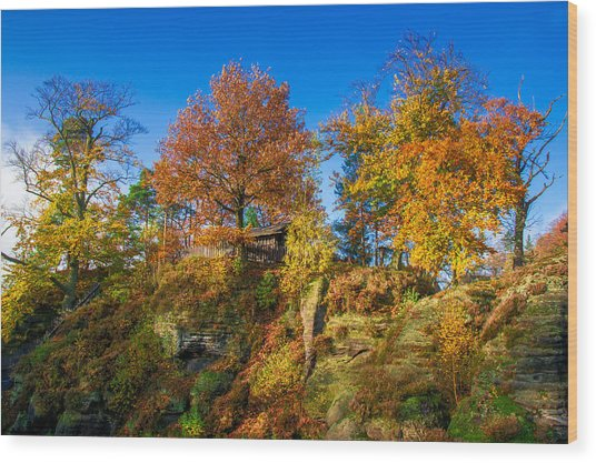 Golden Autumn On Neurathen Castle Wood Print