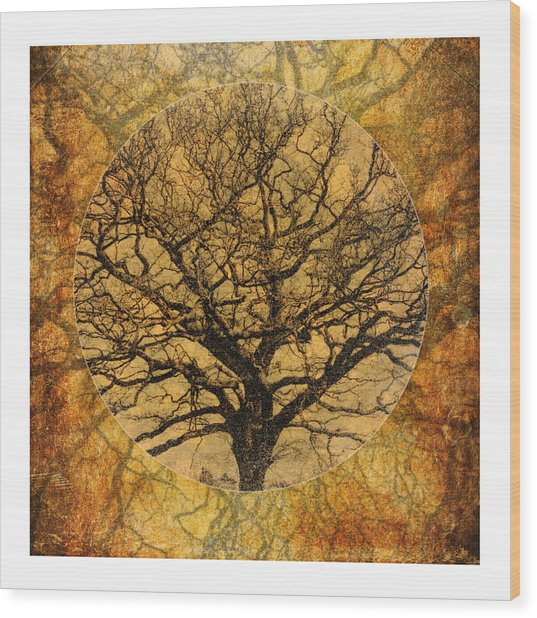 Golden Autumnal Trees Wood Print