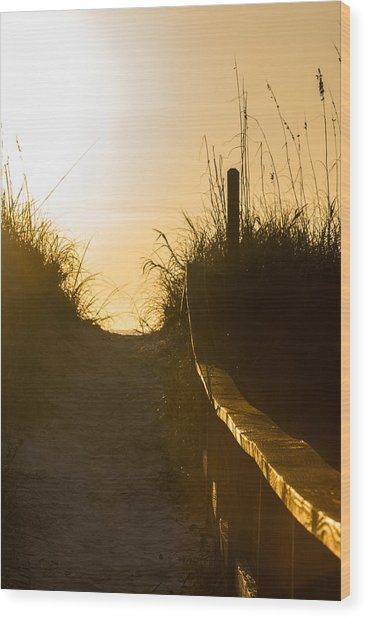 Golden Beach Access Wood Print