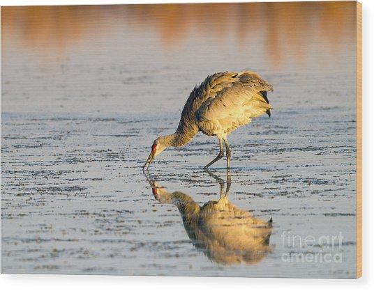 Golden Crane Reflections Wood Print