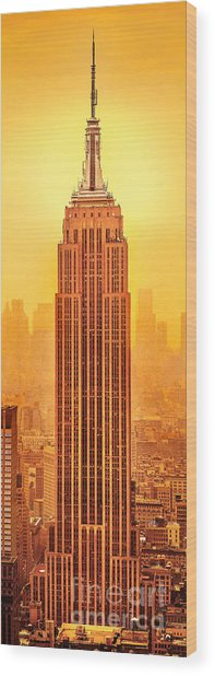 Golden Empire State Wood Print