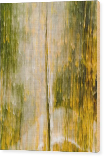 Golden Falls  Wood Print