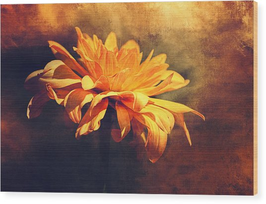 Golden Flower Wood Print