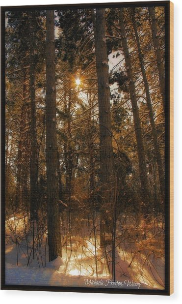 Golden Forrest Wood Print