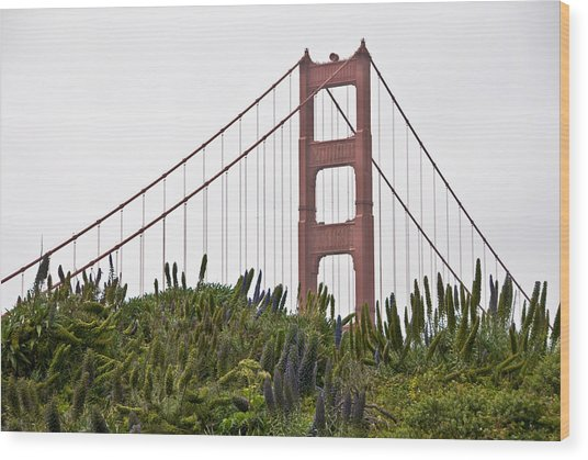 Golden Gate Bridge 1 Wood Print