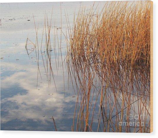 Golden Grasses Wood Print