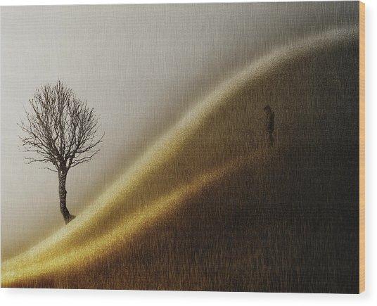 Golden Hills Wood Print by Helge Andersen