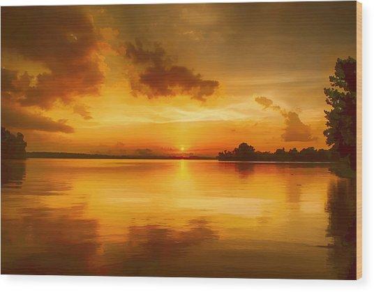 Golden Honey Sunset Wood Print by Dan Holland