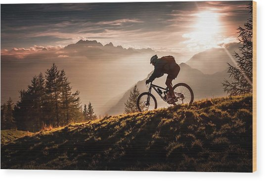 Golden Hour Biking Wood Print by Sandi Bertoncelj