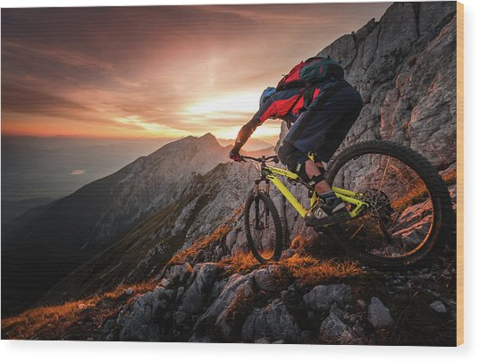 Golden Hour High Alpine Ride Wood Print