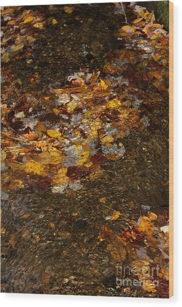 Golden Reflection Great Smoky Mountains Wood Print