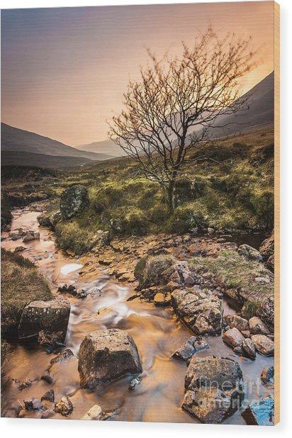 Golden Light River Wood Print
