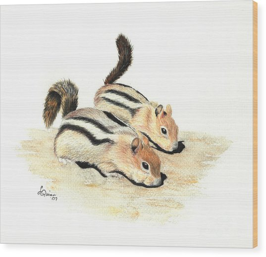 Golden-mantled Ground Squirrels Wood Print
