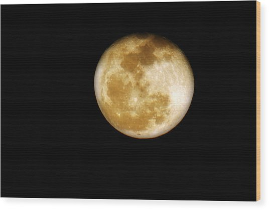 Golden Moon Wood Print
