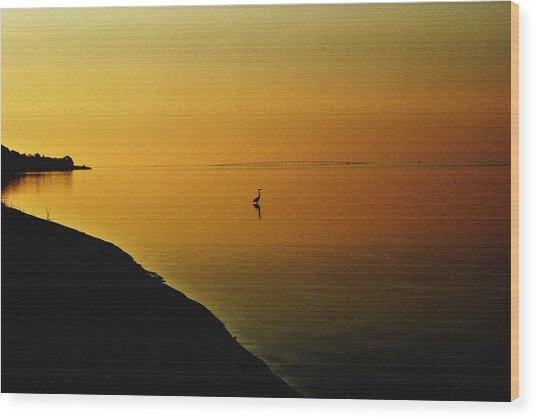 Golden Morning Wood Print