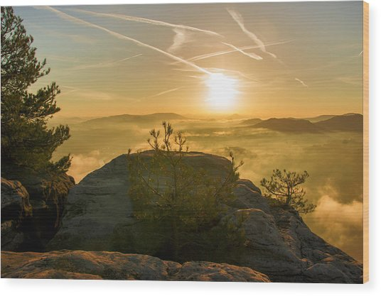 Golden Morning On The Lilienstein Wood Print