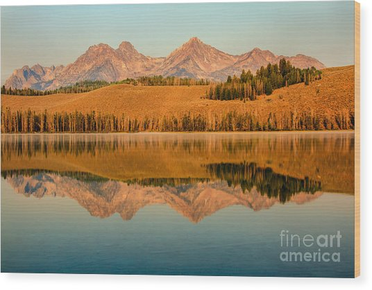Golden Mountains  Reflection Wood Print