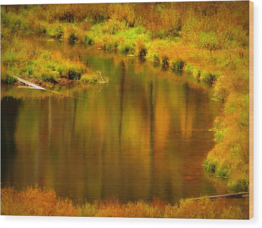 Golden Reflections Wood Print