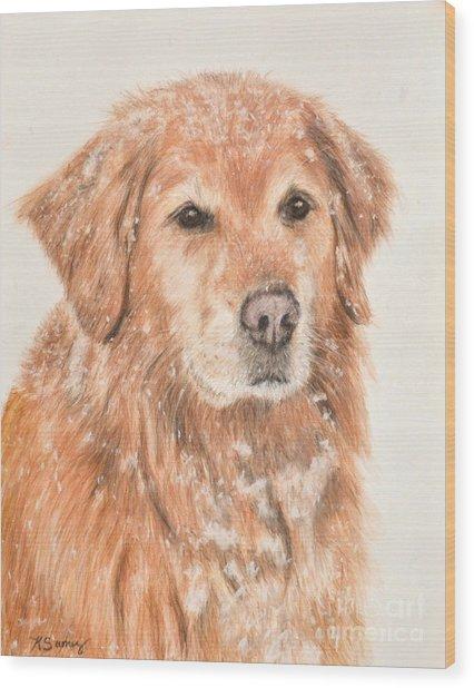 Golden Retriever In Snow Wood Print