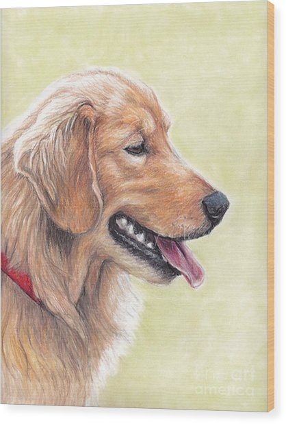 Golden Retriever Profile Wood Print by Charlotte Yealey