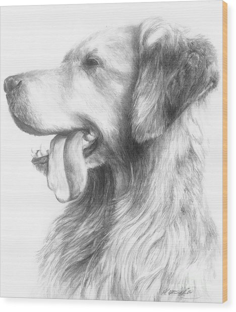 Golden Retriever Study Wood Print