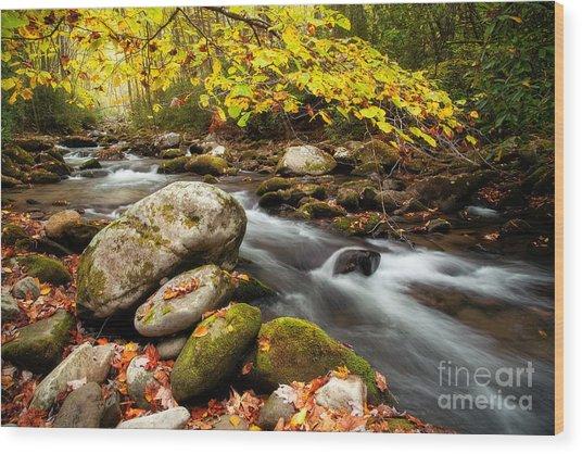 Golden River Rush Wood Print