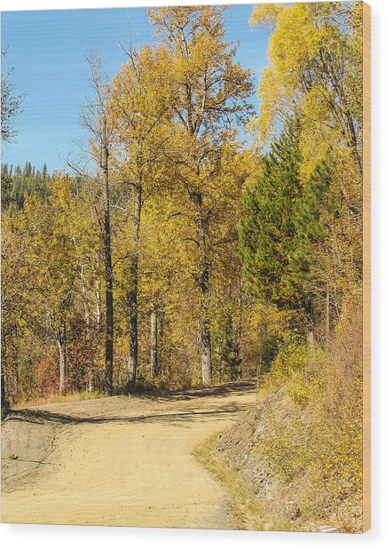 Golden Road 2 Wood Print by Curtis Stein