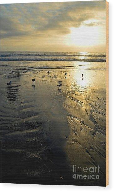 Golden Sandy Canvas Wood Print